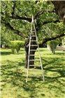 Pointed fruit picking ladder 2.2 m