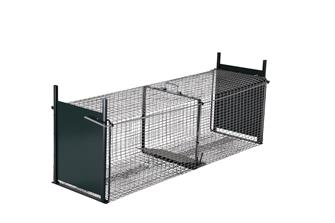 Cage trap with two entrances