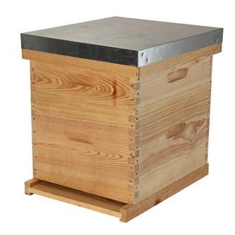 1st choice 10 frame Dadant hive