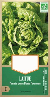 Fat lazy blond lettuce seeds