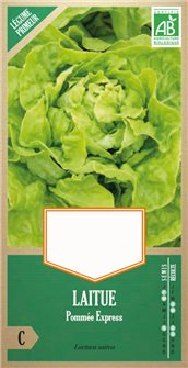 Express lettuce seeds