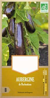 Barbentane aubergine seeds